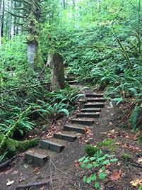 odwalla-lake-trail